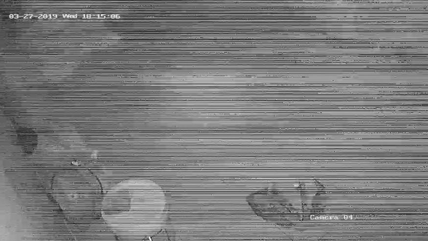 Nguyên nhân camera quan sát bị nhiễu và cách xử lý